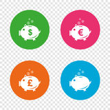 Piggy bank icons. Dollar, Euro, Pound moneybox. Piggy bank icons. Dollar, Euro and Pound moneybox signs. Cash coin money symbols. Round buttons on transparent Stock Image
