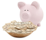 Piggy bank isolated Stock Image