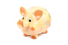 Piggy bank isolated, concept for business and save money Royalty Free Stock Photos