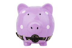 Piggy bank isolated. Savings concept. Piggy bank with ball gag isolated on white background. Savings concept Stock Photography