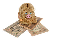 Piggy bank isolated Royalty Free Stock Photography