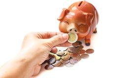 Piggy bank. Stock Photography