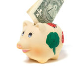 Piggy bank isolated on white background Stock Image
