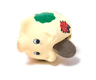 Piggy bank isolated on white background Stock Images