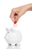 Piggy bank isolated Stock Photography