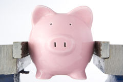 Piggy bank in jaws of vice Royalty Free Stock Photos