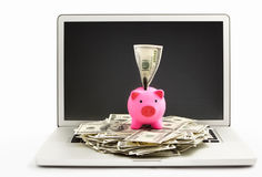 Piggy bank on laptop Stock Photography