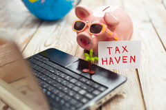 Piggy bank, laptop, globe,palm- tax haven concept Royalty Free Stock Photos