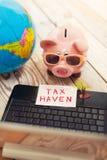 Piggy bank, laptop, globe,palm- tax haven concept Royalty Free Stock Image