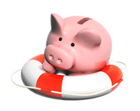 Piggy bank and lifebuoy Stock Images