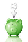 Piggy bank with lightbulb Stock Photo