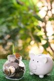 Piggy bank looking on glass of jar that fulled of money. Money savings concept. Copy space save coin pile rich finance business investment cash currency wealth royalty free stock photography