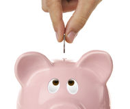 Piggy bank looking up for the coin Royalty Free Stock Photos
