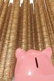 Piggy bank looking up at tall piles of coins Stock Photos