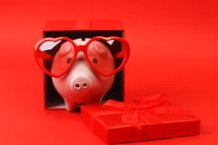 Piggy bank in love with red heart sunglasses standing in gift box with ribbon on red background Stock Images