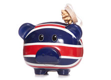 Piggy bank with massage tool Stock Images