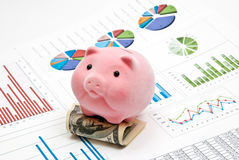 Piggy bank and money. Pink piggy bank on money with business charts Royalty Free Stock Photography