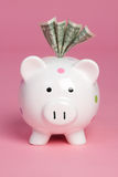 Piggy Bank Money Royalty Free Stock Photos