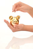 Piggy bank and money. Woman hand holding piggy bank isolated on white Stock Photo