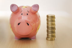 Piggy Bank and Money Royalty Free Stock Image