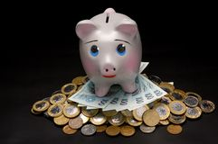 Piggy Bank with money. On the black backgroud Stock Photos