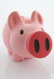 Piggy bank / money-box. Piggy bank or money-box on a white studio background Royalty Free Stock Photos