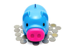 Piggy bank or money box and coins . Royalty Free Stock Photo