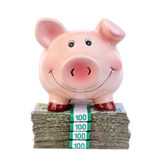 Piggy bank and money clips Stock Photography