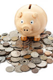 Piggy Bank Money Coins. A piggy bank resting on a pile of mixed coins on white background Royalty Free Stock Photography