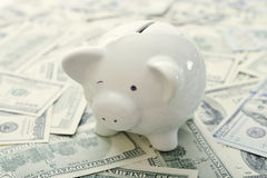 Piggy bank with money Stock Image