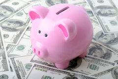 Piggy bank money Royalty Free Stock Photography