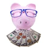 Piggy bank with money. Saving account concept background Stock Photography