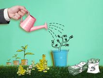 Piggy Bank Money Saving Finance Concept. Piggy bank pink color on white background Stock Image