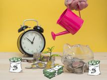 Piggy Bank Money Saving Finance Concept. Watering can and money tree drawn concept for business investment, savings and making money Stock Image