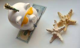 Piggy bank money savings vacation concept. Piggy bank money savings and starfish on a white background Stock Image