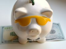 Piggy bank and money savings. On a white background Stock Image