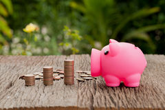 Piggy bank and money tower on wooden, saving concept. Natural ba Royalty Free Stock Photos
