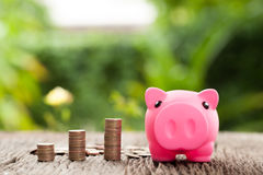Piggy bank and money tower on wooden, saving concept. Natural ba Stock Images