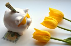 Piggy bank money and yellow tulips Royalty Free Stock Photos
