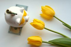 Piggy bank money and yellow tulips Royalty Free Stock Images