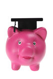 Piggy Bank with Mortarboard Stock Images