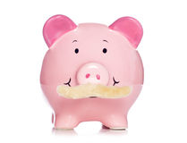 Piggy bank with a moustache Royalty Free Stock Image
