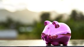 Piggy bank on nature background. Pink Piggy Bank In A Green Field  nature background Stock Photo