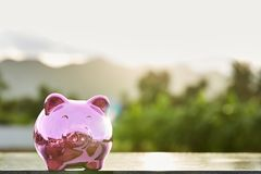 Piggy bank on nature background. Pink Piggy Bank In A Green Field  nature background Stock Photography