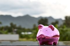 Piggy bank on nature background. Pink Piggy Bank In A Green Field  nature background Royalty Free Stock Photography