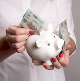 Piggy bank and new banknotes Stock Images