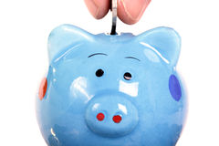 Piggy bank officer put money inside ,clipping path. Piggy bank officer put money inside for invest in the future ,include clipping path Stock Image