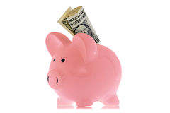 Piggy bank with one dollar Stock Photography