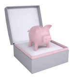 Piggy bank in open gift box Royalty Free Stock Photos