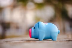 Piggy bank  outside on home background royalty free stock image